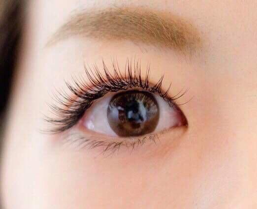 eyelash9